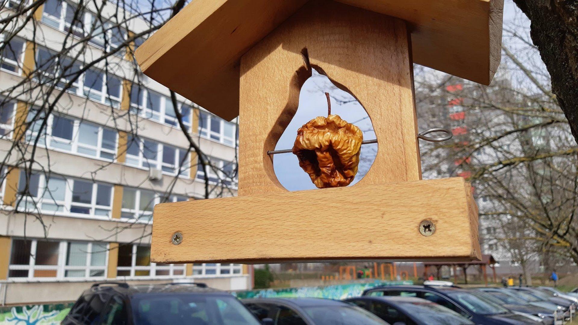 Vtáčí obyvatelia sídlisk